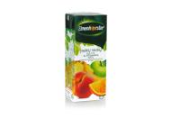 ELMENHORSTER įvairiu vaisių sultys 100% 0,2l V1920YF V1920YF
