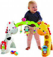 FISHER PRICE Newborn to Toddler Play Zone, CCB70 CCB70